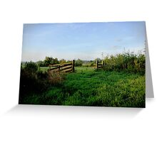 Meadow gate in morning light  Greeting Card