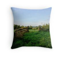 Meadow gate in morning light  Throw Pillow