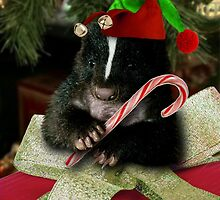 Christmas Elf Skunk by jkartlife