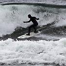 Wave Hunter by Olga Zvereva