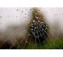 Imagine a multidimensional spider's web... Photographic Print