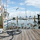 When The Shrimp Boats Come In by JohnDSmith