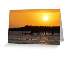 Sunset and Dolphins Greeting Card