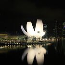 ArtScience Museum @ Marina Bay Sands - Singapore by Arnold Chan