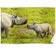 India Kaziranga National Park Poster