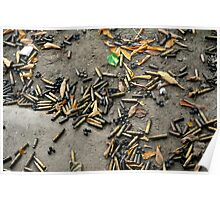 Spent cartridge shells on ground in Vietnam Poster