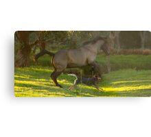 Tally and Frodo Running Free Metal Print