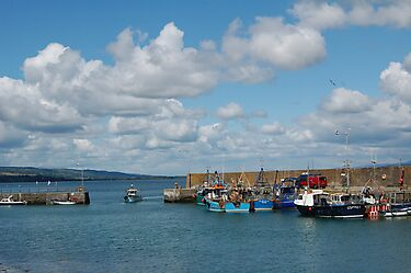 Helvick Head Harbour  by Declan Carr