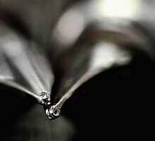 My beloved fountain pens... by Bob Daalder