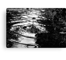 A drop of water Canvas Print
