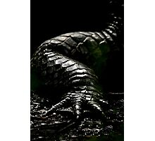 The Dark Side:  Alligator Armor Photographic Print