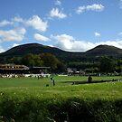 Eildon Hills behind the Greenyards, Melrose by Babz Runcie