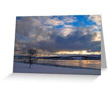 Winter tree-III Greeting Card