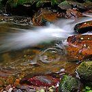 Rancina Stream   III. by jimmylu