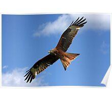 As High as a Kite. Poster
