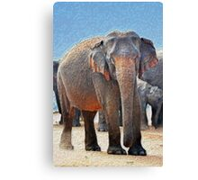 Painted Elephant in the Desert Canvas Print