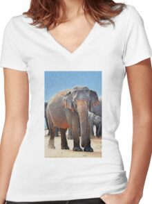 Painted Elephant in the Desert Women's Fitted V-Neck T-Shirt