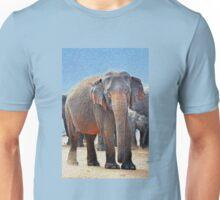 Painted Elephant in the Desert Unisex T-Shirt