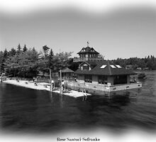 St. Lawrence Seaway/Thousand Islands in Black & White by Rose Santuci-Sofranko