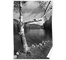 Spring Mountain Lake Poster