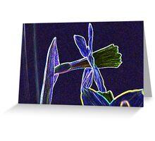 Artistic Daffodil Greeting Card