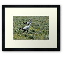 Search and Destroy Mission Framed Print