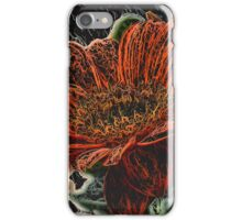 Orange Daisy on a Stem iPhone Case/Skin