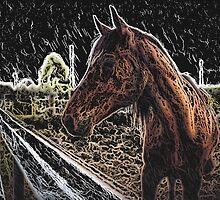 Brown Horse in a Field by PrintArtdotUS