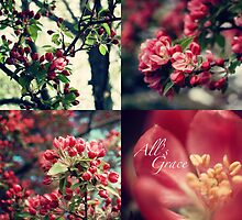 All's Grace by back40fotos