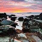 Pink Dawn - Coolum First Bay by Tom Anderson