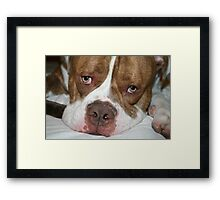 I won't take up to much room... Framed Print