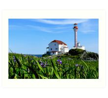 Cape Forchu in Irises Art Print