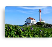 Cape Forchu in Irises Canvas Print