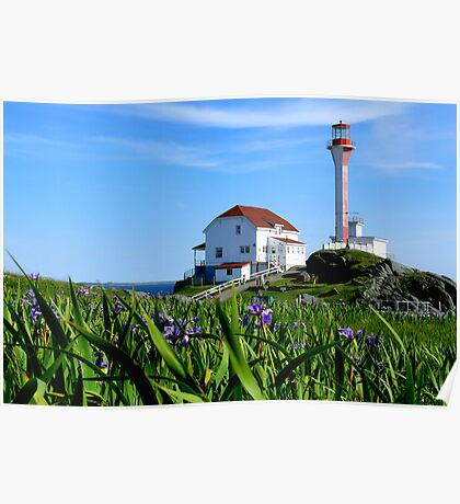 Cape Forchu in Irises Poster