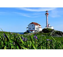 Cape Forchu in Irises Photographic Print
