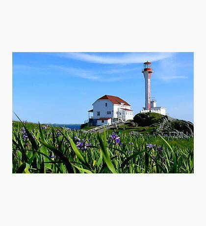 Cape Forchu in Irises Photographic Print