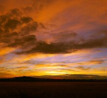 Sunset over the Darling Downs by Tom Anderson