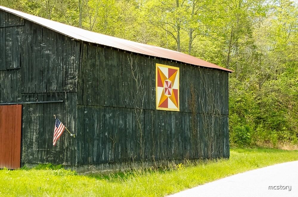 Kentucky Barn Quilt - July Summer Sky by Mary Carol Story