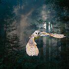 Owl at Midnight by MaureenTillman