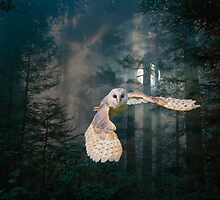 Owl at Midnight by MaureenTillman