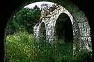 Old Trulli Ruin - Italy by Debbie Pinard