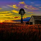 Pure Country by Gary Smith
