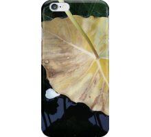 Downside of Autumn iPhone Case/Skin
