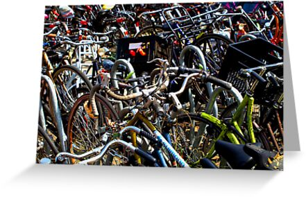 amsterdam bicycles by bigcamo