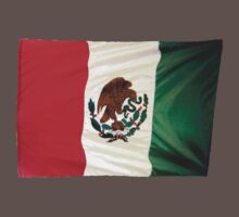 Mexican Flag t & iPhone by DAdeSimone