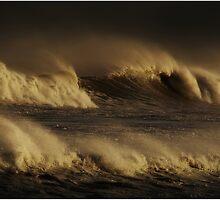 Wild Surf by Karen Scrimes