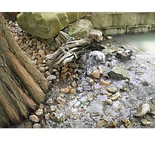 Sticks and Stones Photographic Print