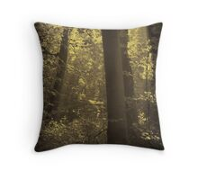 June morning in the woodland Throw Pillow
