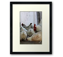 Chicken #2 Framed Print