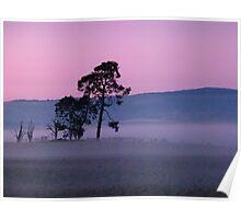 Mist at Sunset Poster
